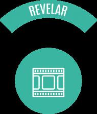 Metodo Nort3 Revelar